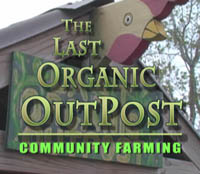 Last Organic Outpost